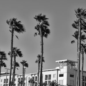 The Strand Huntington Beach by Kelly Bourquin Copyright 2017